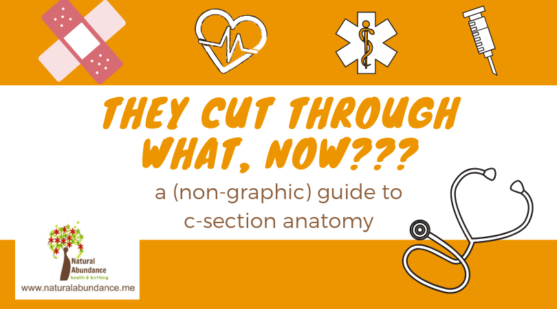 They Cut Through What Now Anatomy Of A C Section