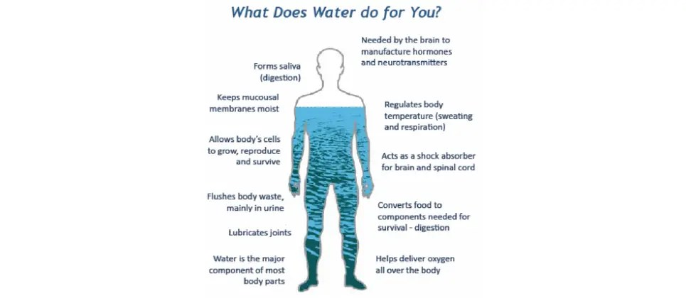 New Structured Water Devices Hydrate The Body
