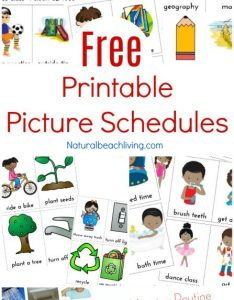 Free printable picture schedule cards daily visual schedules special needs also printables rh naturalbeachliving