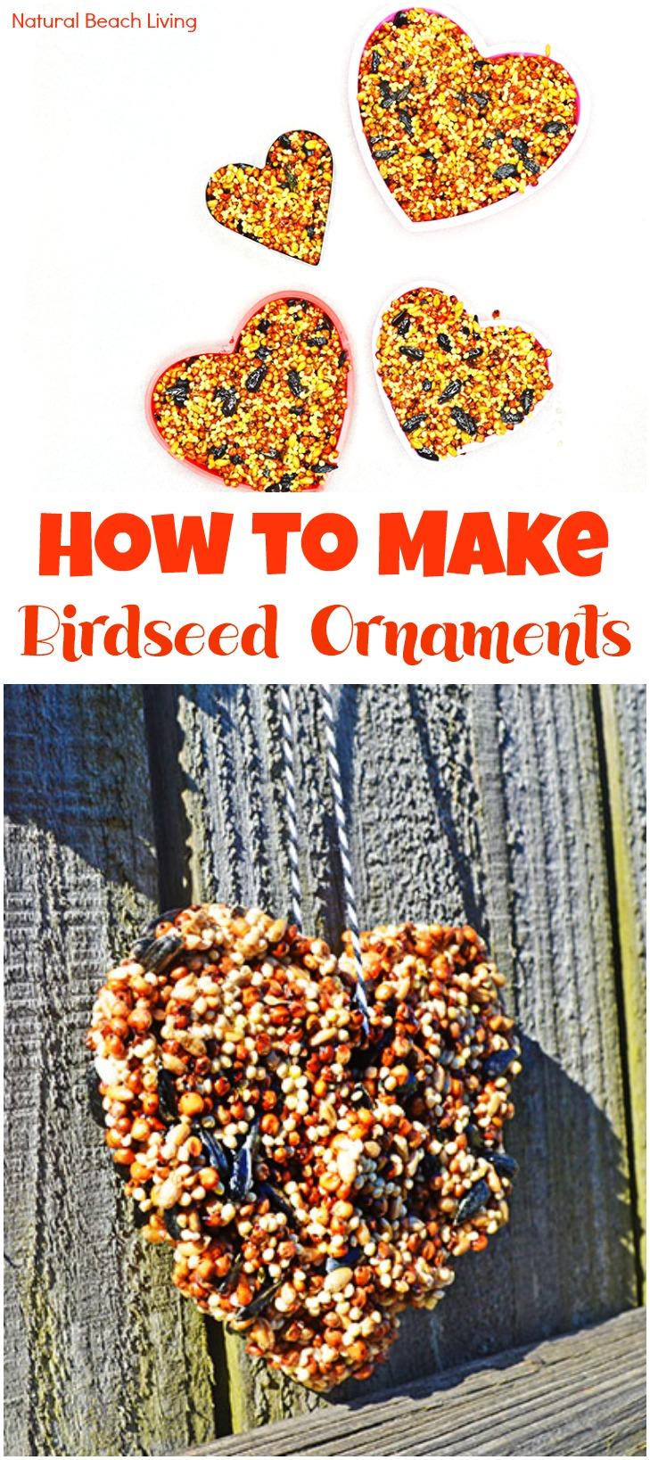 Easy Homemade Bird Seed Ornaments Recipe Natural Beach