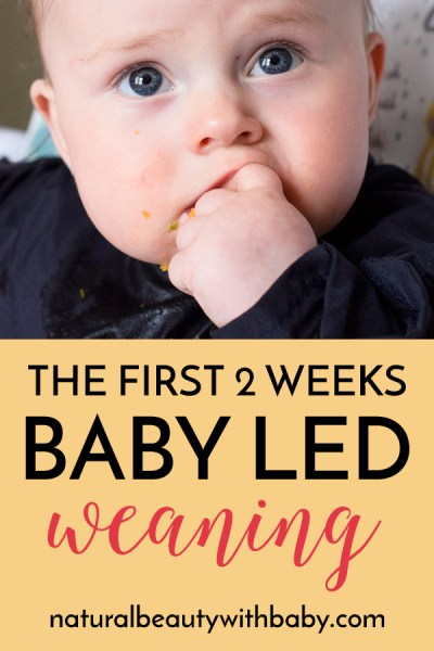 Thinking about starting baby led weaning? Read about our first two weeks following BLW - first foods, how to prepare meals, equipment like highchairs, bibs, and spoons, our setup and more! #babyledweaning #blw #weaningtips
