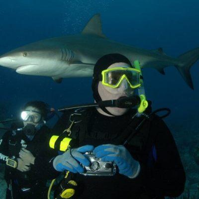 Diver's Balm
