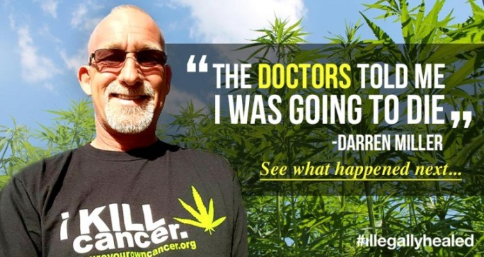 Image result for 50-Year-Old Man Cures Lung Cancer With Cannabis Oil, Stuns CBS News