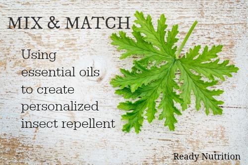 Fresh Skin Citronella Oil