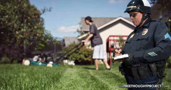 Children Now Face Fines And Arrest If They Don't Get a Permit To Mow Grass For Money