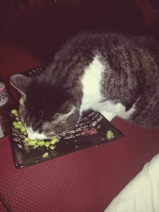 Buddha tries to eat my edamame