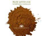 Natural Ether Website Images BLUE LOTUS 20X 2