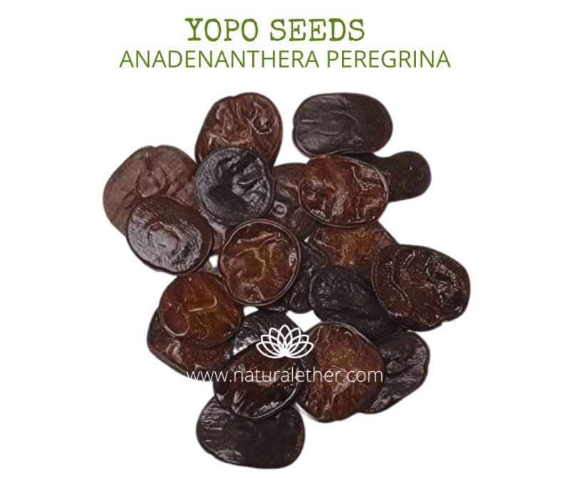 Natural Ether Website Images YOPO SEEDS 2