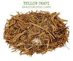 Natural Ether Website Images YELLOW CAAPI 2