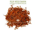 Natural Ether Website Images KLIP WILD DAGGA 2 (1)