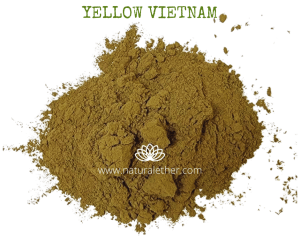Natural Ether Website Images YELLOW VIETNAM 2