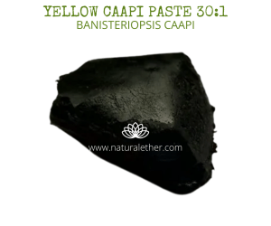 Natural Ether Website Images Yellow Caapi paste 301 2