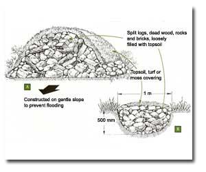 Creating Reptile/Amphibian Hibernacula and Refuges » Kevin