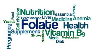Folate health benefits