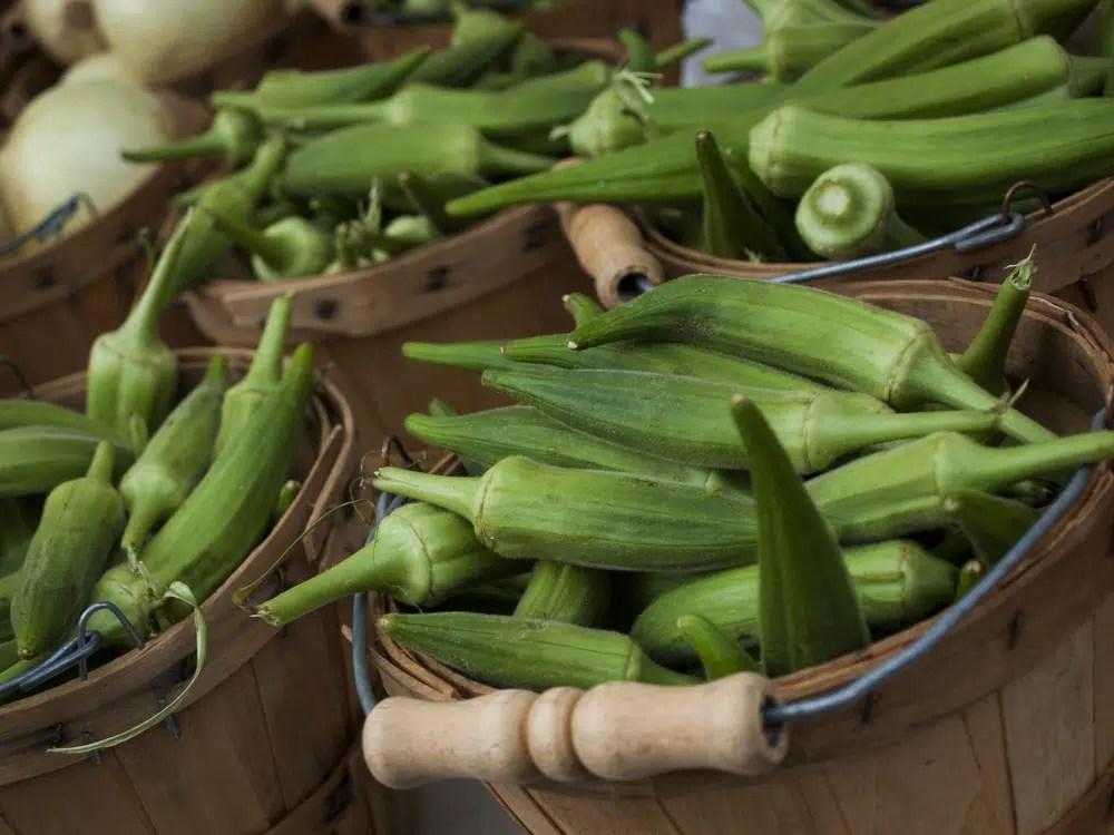 Benefícios para a saúde do quiabo