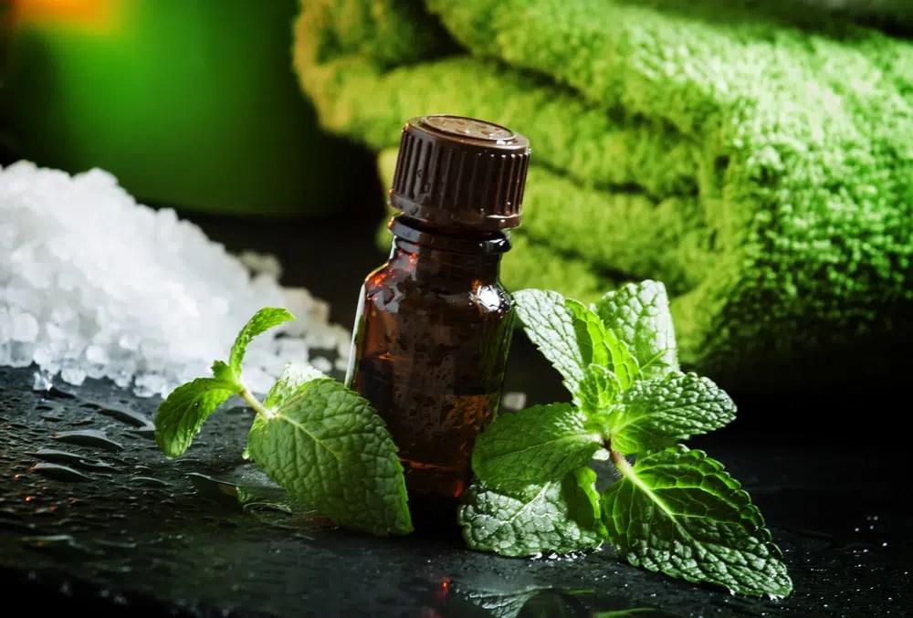 11 Benefícios impressionantes do óleo essencial de hortelã-pimenta