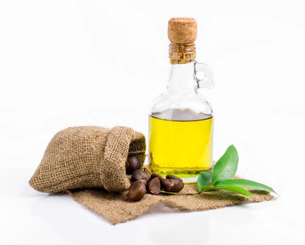 Benefícios do óleo de camélia (óleo de semente de chá)