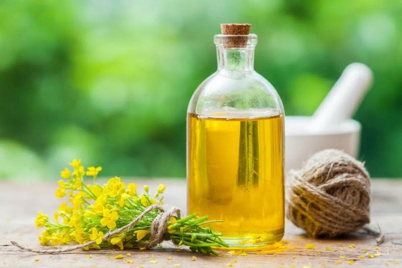 9 Impressive Health Benefits of Rapeseed Oil