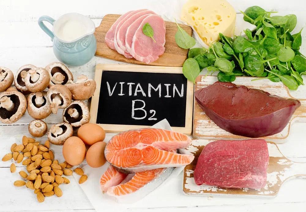 Excelentes fontes de vitamina B2