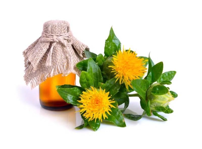 11 Amazing Health Benefits of Safflower Oil