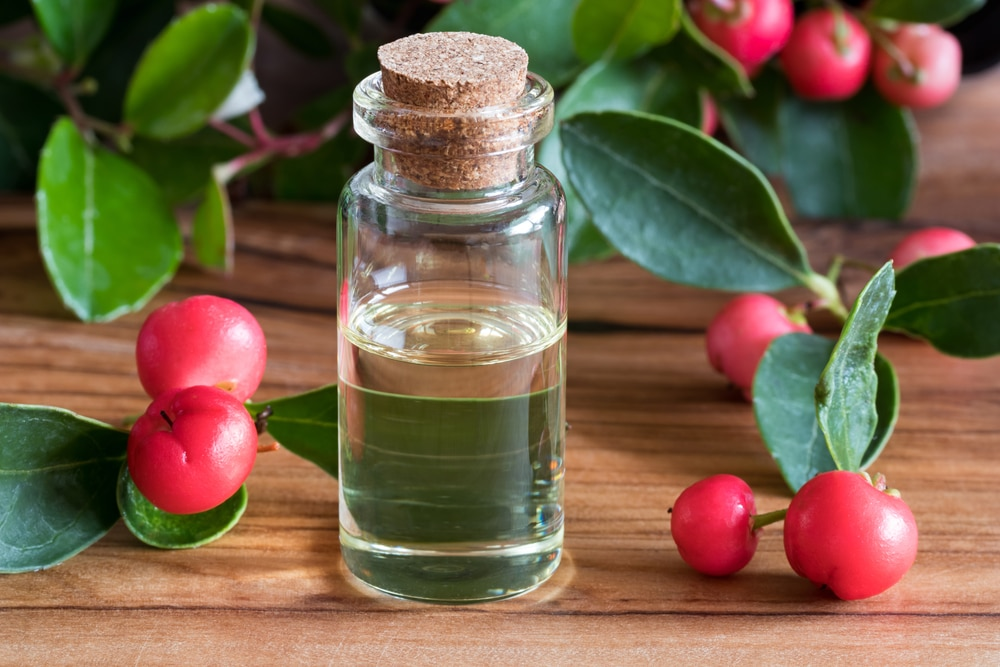 Benefícios do óleo essencial Wintergreen