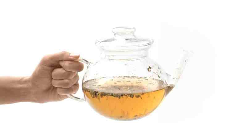 11 Amazing Health Benefits of White Tea