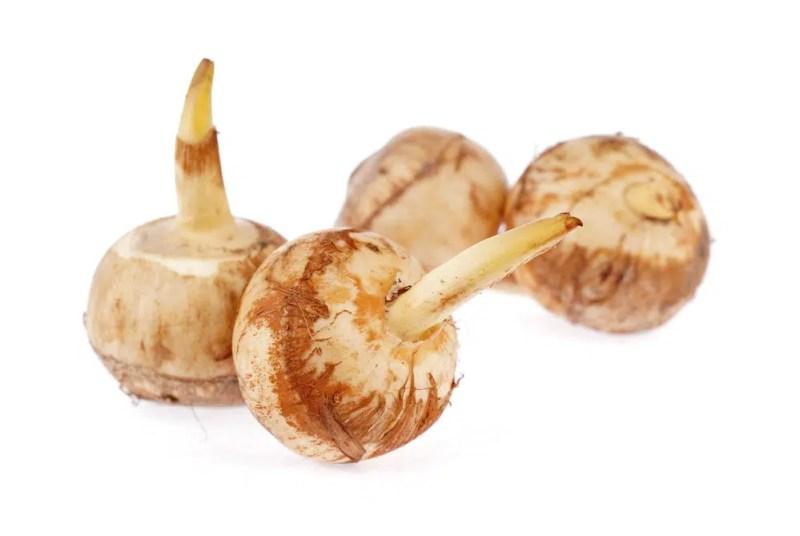 11 Amazing Health Benefits of Arrowroot