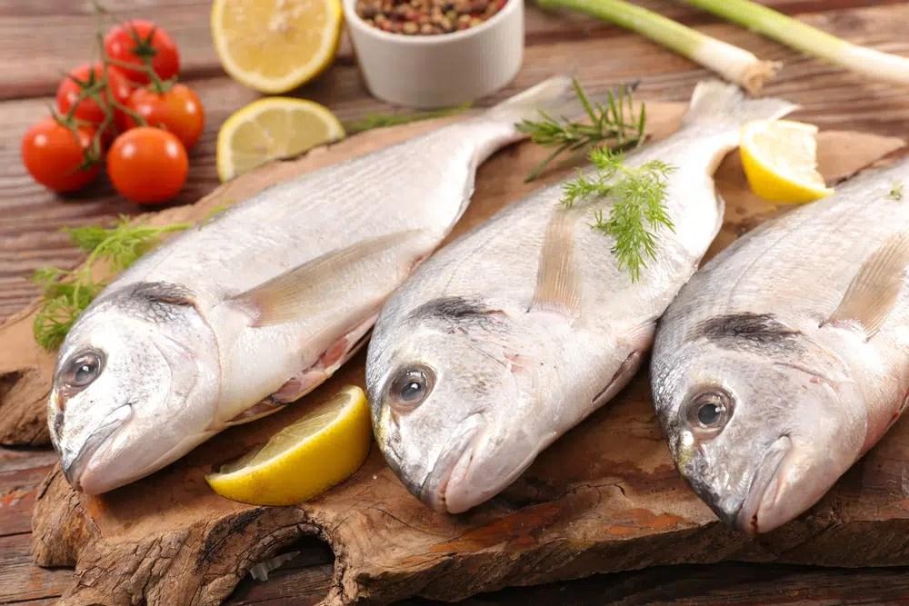 Rôle du poisson dans l'organisme