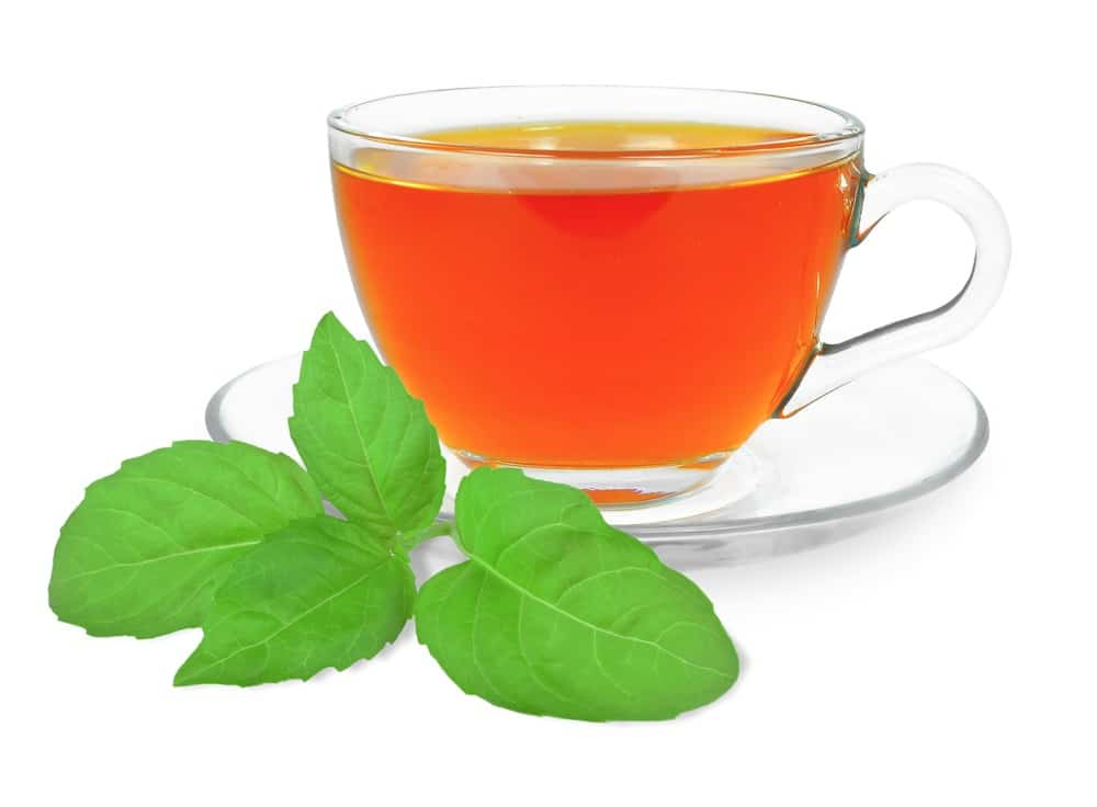 Benefícios incríveis do chá de manjericão