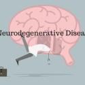 What is Neurodegenerative Disease?