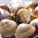 9 Amazing Health Benefits of Clams