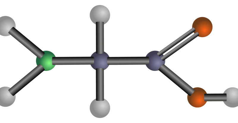 What Are Amino Acids