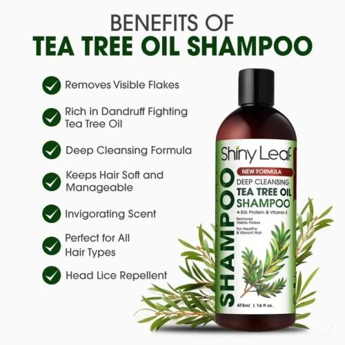 How To Make Tea Tree Oil Shampoo