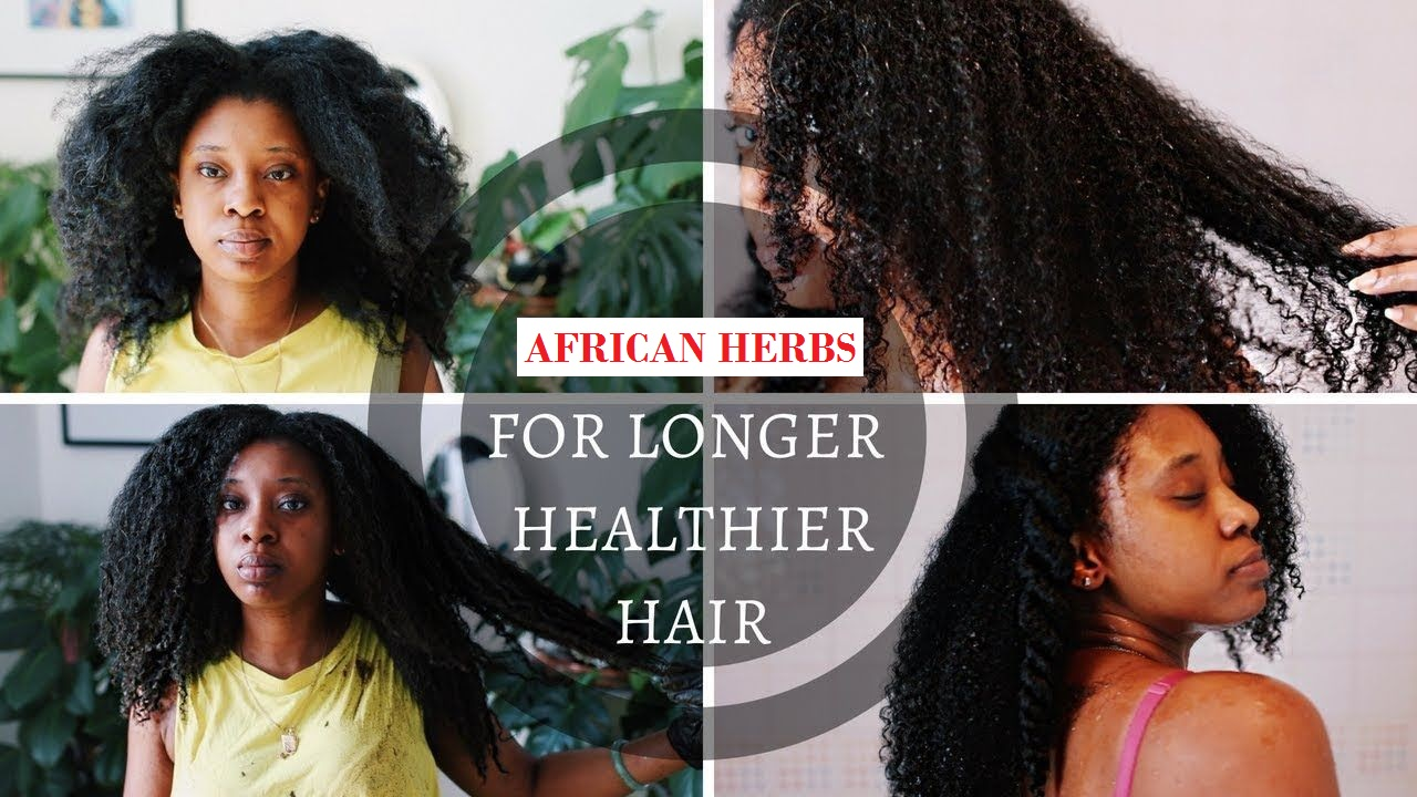 5 African Herbs For Hair Growth Remedies That Really Work