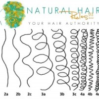 Beginner's Guide to Discovering Your Hair Type