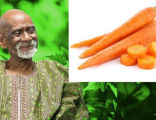 Carrots Dr Sebi