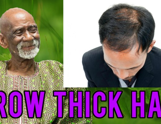 Dr Sebi Hair Food