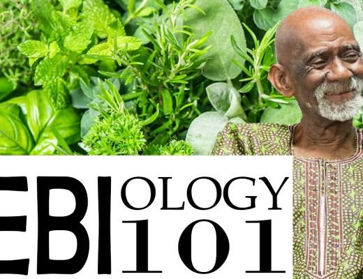 Bio Mineral Balance Diet