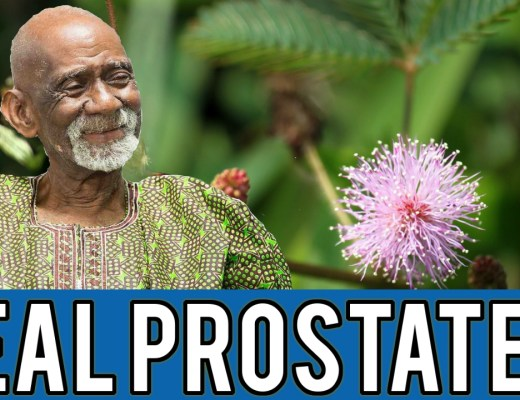Prostate Cancer Dr Sebi