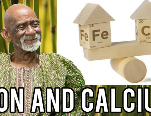 Calcium Dr Sebi