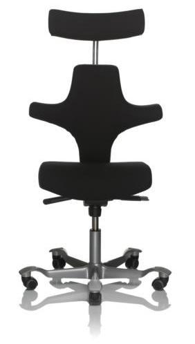 HAG Capisco 8127  Ergonomic Chair