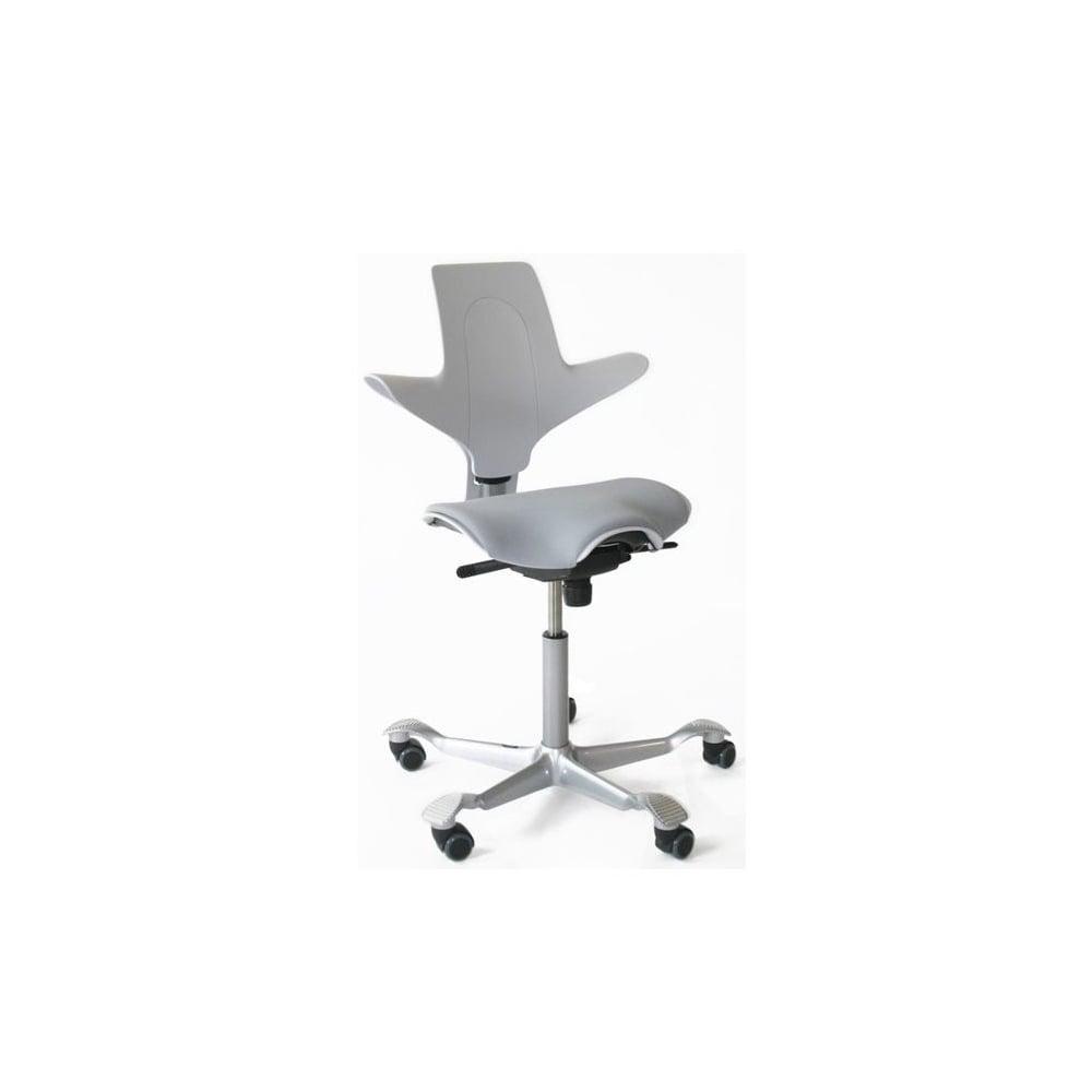 HAG Capisco Puls 8020  Ergonomic Chair