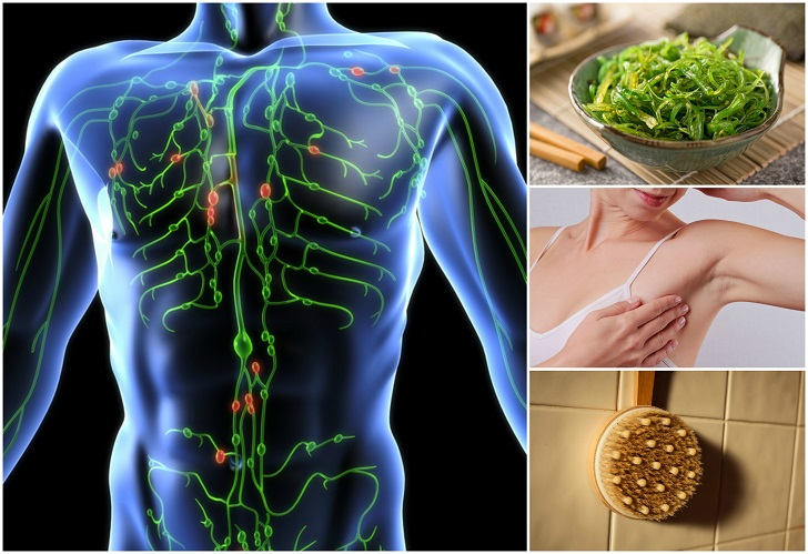 Image result for Signs Your Lymphatic System is Clogged and How To Repair It
