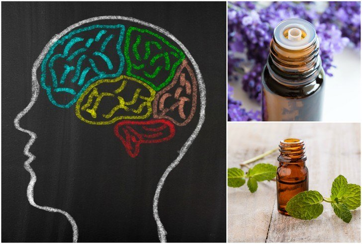 10 Best Essential Oils For Focus. Concentration & Mental Clarity