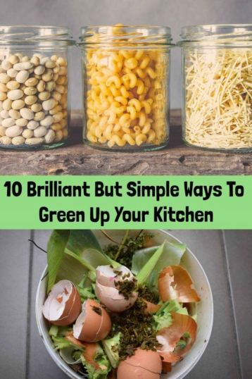 10 Brilliant But Simple Ways to Green Up Your Kitchen