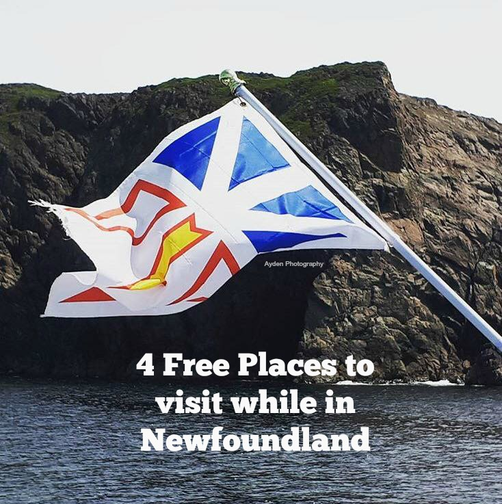 4 Free Places to visit while in Newfoundland