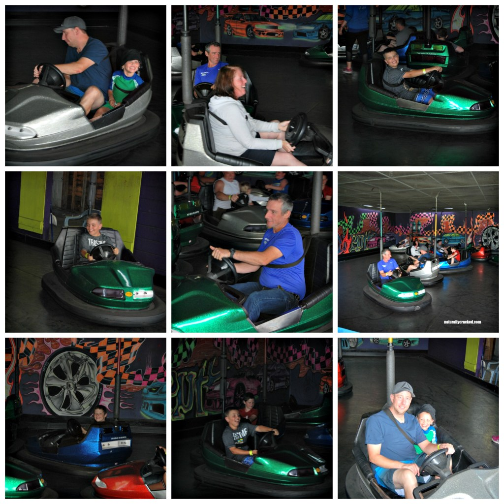Splash n' Putt Bumper Cars