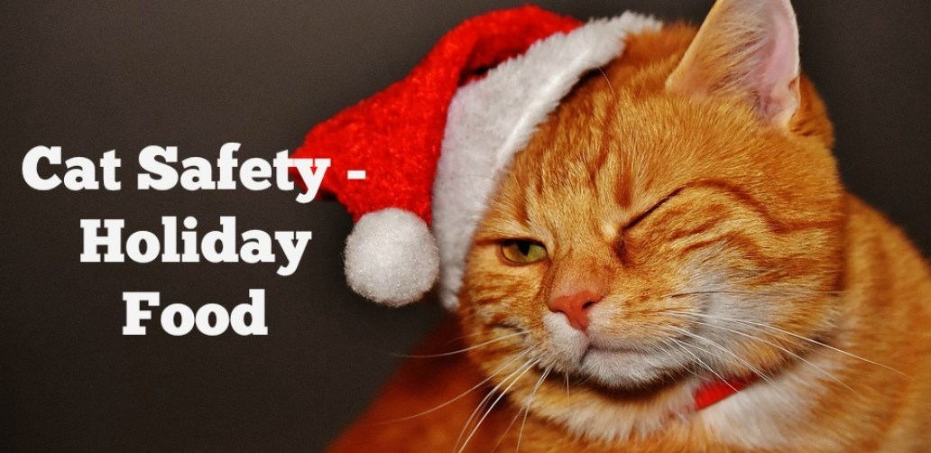 Cat Safety - Holiday Food