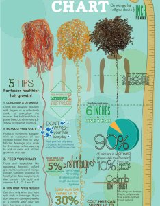 Curly hair growth chart also naturallycurly rh