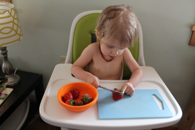 ToddlerStrawberryConcentrate